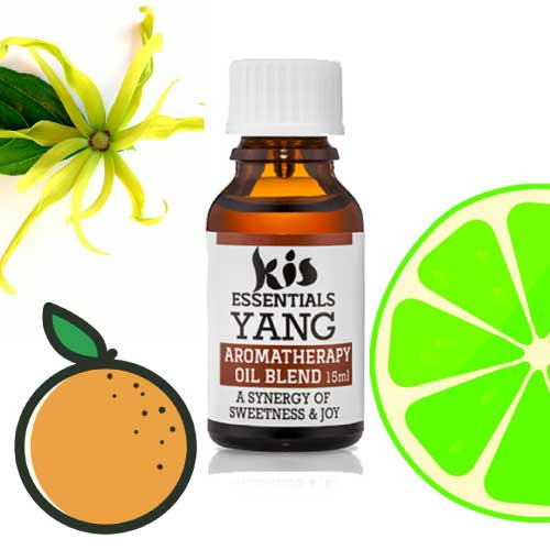 Aromatherapy Essential Oil Blend by Kis my Body
